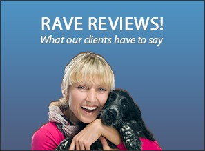 Rave Reviews! What our clients have to say.