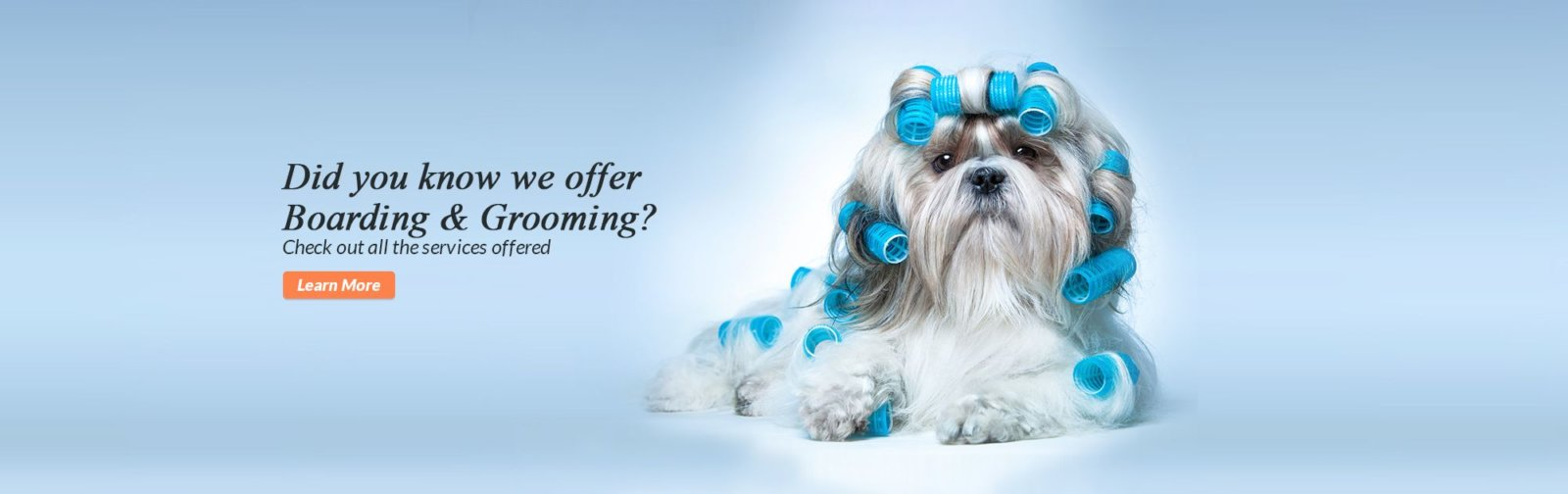 Did you know we offer Boarding & Grooming? Check out all the services offered. Learn More.